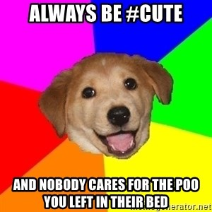 Advice Dog - always be #cute and nobody cares for the poo you left in their bed