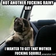 introspective pug - NOT ANOTHER FUCKING RAINY DAY  I WANTED TO GET THAT MOTHER FUCKING SQUIRLE
