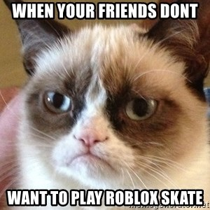 Angry Cat Meme - When your friends dont  Want to play roblox skate
