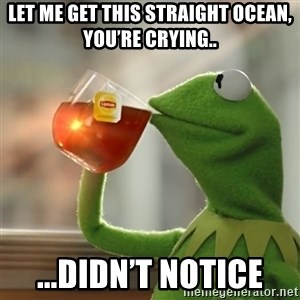 Kermit The Frog Drinking Tea - Let me get this straight Ocean, you're crying.. ...didn't notice