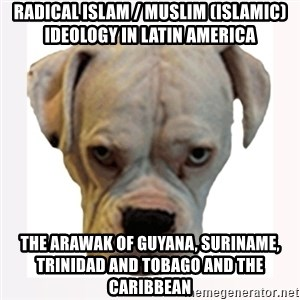 stahp guise - Radical Islam / Muslim (Islamic) Ideology in Latin America  The Arawak of Guyana, Suriname, Trinidad and Tobago and the Caribbean