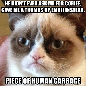 Angry Cat Meme - he didn't even ask me for coffee, gave me a thumbs up emoji instead. piece of human garbage