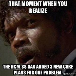 Angry Samuel L Jackson - That Moment when you realize The HCM-SS has added 3 new care plans for one problem.