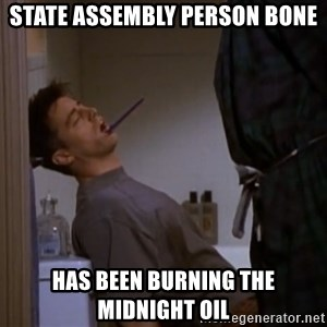 Bored sleeping Joey - state assembly person bone has been burning the midnight oil