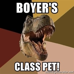 Raging T-rex - Boyer's  Class Pet!