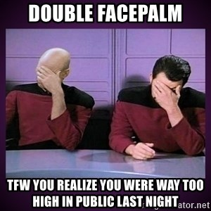 Double Facepalm - Double Facepalm TFW you realize you were way too high in public last night