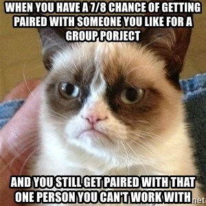 Grumpy Cat  - When you have a 7/8 chance of getting paired with someone you like for a group porject and you still get paired with that one person you can't work with