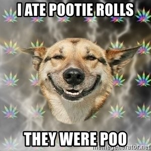 Stoner Dog - i ate pootie rolls they were poo
