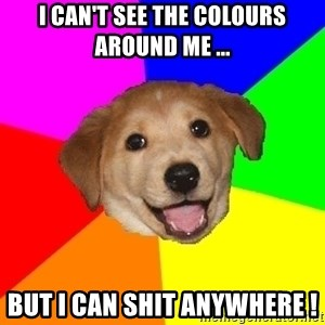 Advice Dog - I can't see the colours around me ... But I can shit anywhere !