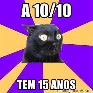 Anxiety Cat - a 10/10 tem 15 anos