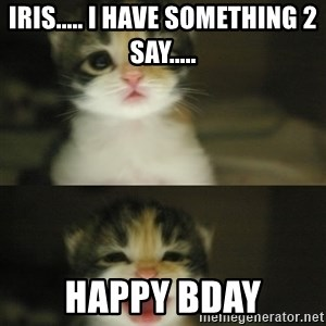 Adorable Kitten - iris..... i have something 2 say..... happy bday