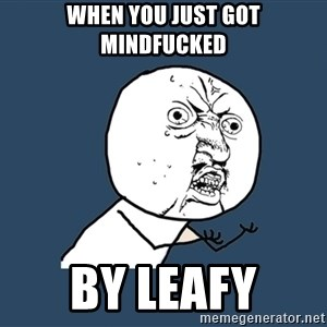Y U No - when you just got mindfucked BY LEAFY