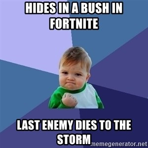 Success Kid - hides in a bush in fortnite last enemy dies to the storm