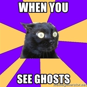 Anxiety Cat - When You see ghosts