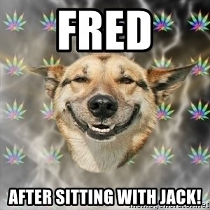 Stoner Dog - Fred After sitting with Jack!