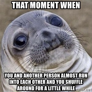 Awkward Seal - That moment when You and another person almost run into each other and you shuffle around for a little while