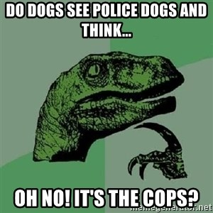 Philosoraptor - do dogs see police dogs and think... oh no! it's the cops?