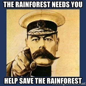 your country needs you - the rainforest needs you help save the rainforest