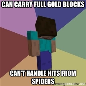Depressed Minecraft Guy - Can carry full gold blocks Can't handle hits from spiders