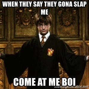 Harry Potter Come At Me Bro - When they say they gona slap me COME AT ME BOI