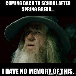 no memory gandalf - Coming back to school after spring break... I have no memory of this.