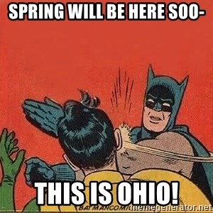 batman slap robin - spring will be here soo- this is ohio!