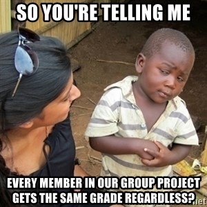 Skeptical 3rd World Kid - So You're Telling me  Every Member in our Group project gets the same grade regardless?