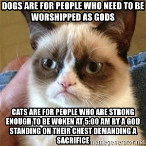 Grumpy Cat  - Dogs are for people who need to be worshipped as gods Cats are for people who are strong enough to be woken at 5:00 AM by a god standing on their chest demanding a sacrifice