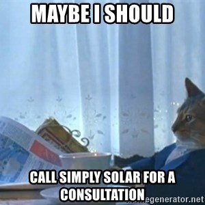 newspaper cat realization - MAYBE I SHOULD CALL SIMPLY SOLAR FOR A CONSULTATION