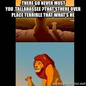 Lion King Shadowy Place - .there go never must you ,Tallahassee ?That'sthere over place terrible that What's He