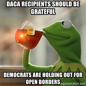 Kermit The Frog Drinking Tea - DACA recipients should be grateful Democrats are holding out for Open Borders