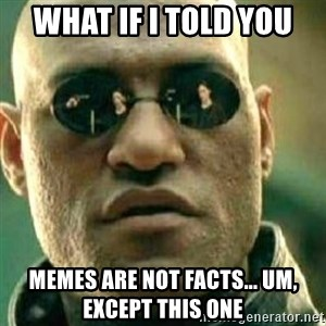 What If I Told You - What if I told you Memes are NOT facts... um, except this one