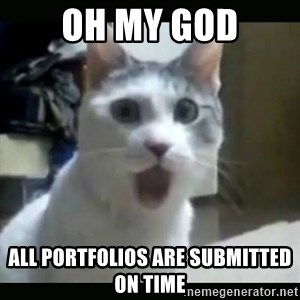 Surprised Cat - oh my god all portfolios are submitted on time