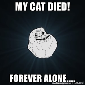 Forever Alone - My cat died! forever alone.....