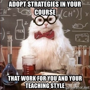Chemistry Cat - adopt strategies in your course that work for you and your teaching style