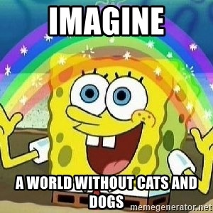 Imagination - IMAGINE a world without cats and dogs
