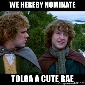 What about second breakfast? - we hereby nominate tolga a cute bae
