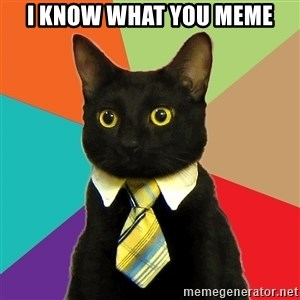 Business Cat - I know what you meme