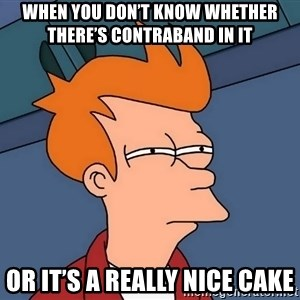 Futurama Fry - When you don't know whether there's contraband in it Or it's a really nice cake