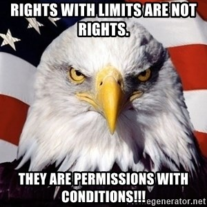 American Pride Eagle - Rights with limits are not rights.  They are permissions with conditions!!!