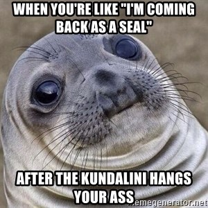 """Awkward Seal - When you're like """"I'm coming back as a seal"""" After the kundalini hangs your ass"""