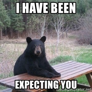 Patient Bear - I have been  Expecting you