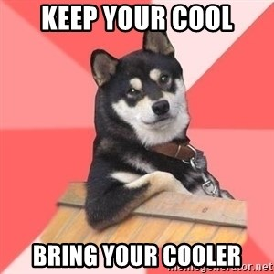 Cool Dog - Keep your cool Bring your cooler