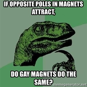 Philosoraptor - if opposite poles in magnets attract, Do gay magnets do the same?