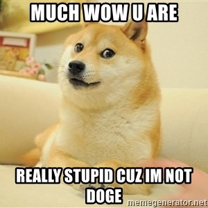 so doge - Much wow u are really stupid cuz im not doge