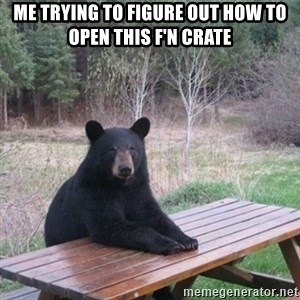 Patient Bear - Me trying to figure out how to open this F'n Crate