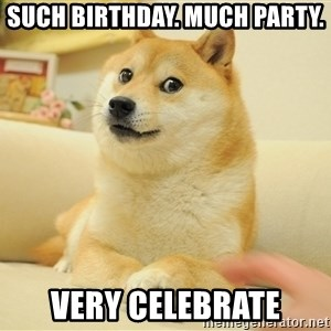 so doge - Such birthday. Much Party. Very Celebrate