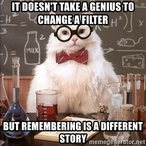 Chemistry Cat - It doesn't take a genius to change a filter but remembering is a different story