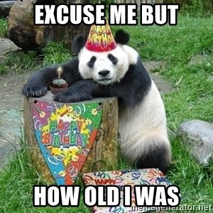 Happy Birthday Panda - excuse me but how old i was