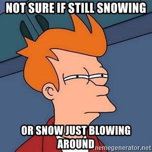 Futurama Fry - not sure if still snowing or snow just blowing around